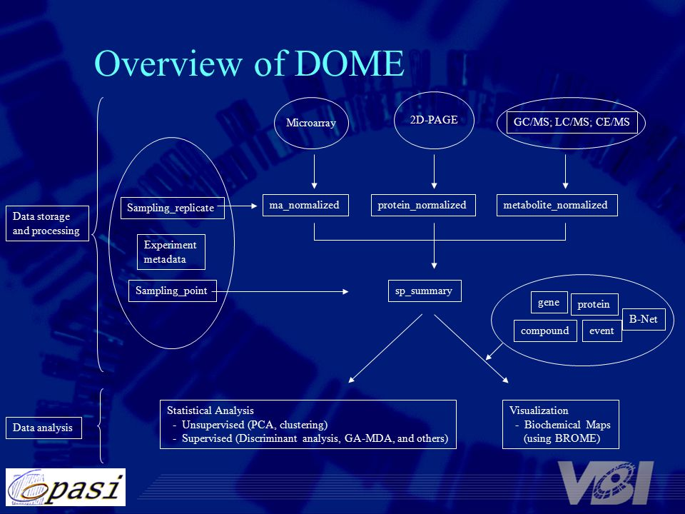 Overview of DOME Microarray 2D-PAGE Experiment metadata Statistical Analysis - Unsupervised (PCA, clustering) - Supervised (Discriminant analysis, GA-MDA, and others) Visualization - Biochemical Maps (using BROME) Data storage and processing Data analysis sp_summarySampling_point Sampling_replicate ma_normalizedprotein_normalizedmetabolite_normalized GC/MS; LC/MS; CE/MS gene protein compoundevent B-Net