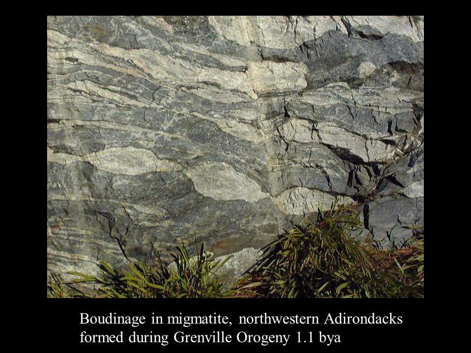 Boudinage in migmatite, northwestern Adirondacks formed during Grenville Orogeny 1.1 bya