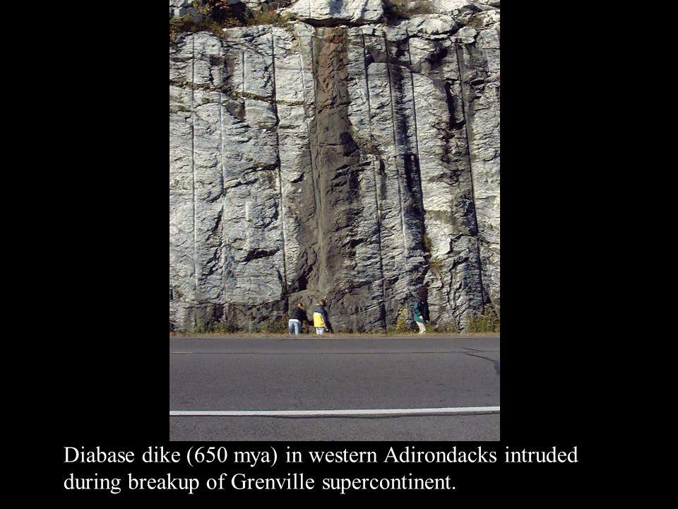 Diabase dike (650 mya) in western Adirondacks intruded during breakup of Grenville supercontinent.