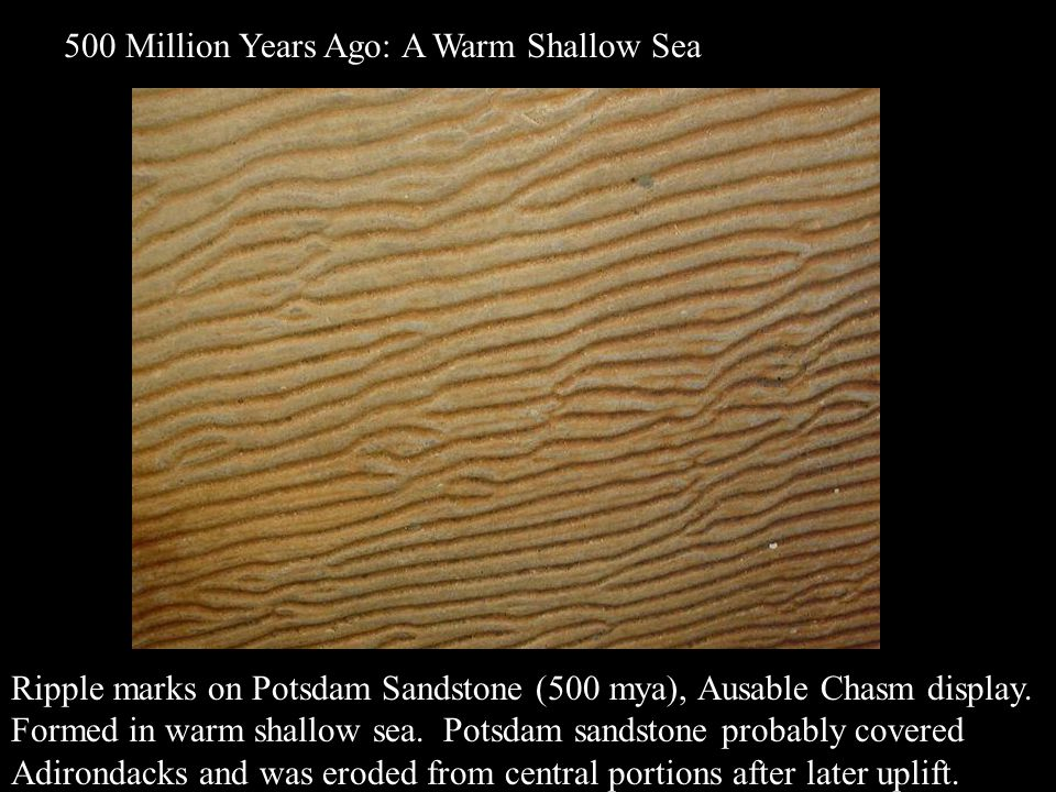Ripple marks on Potsdam Sandstone (500 mya), Ausable Chasm display. Formed in warm shallow sea. Potsdam sandstone probably covered Adirondacks and was