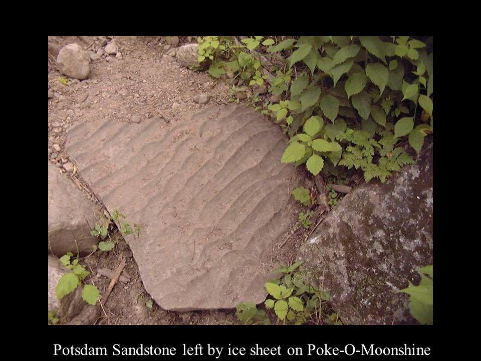 Potsdam Sandstone left by ice sheet on Poke-O-Moonshine