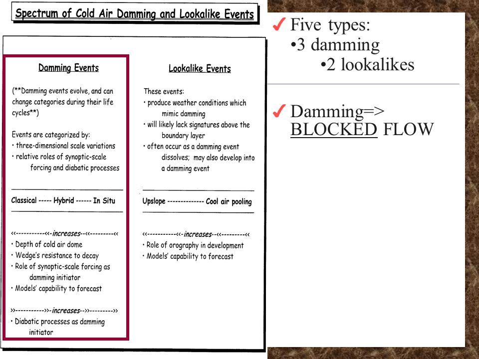 4 Five types: 3 damming 2 lookalikes 4 Damming=> BLOCKED FLOW