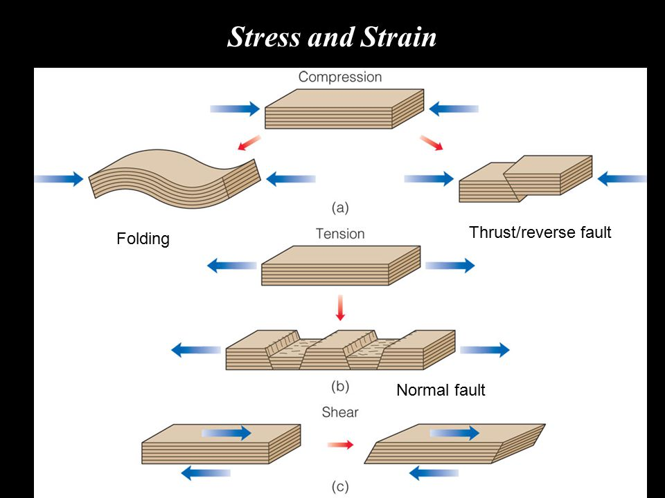 Fractures in Rock Dip-slip faults Normal and reverse faults, are the most common types of dip-slip faults.