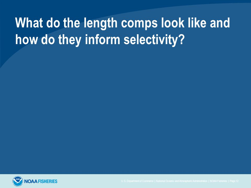 What do the length comps look like and how do they inform selectivity.