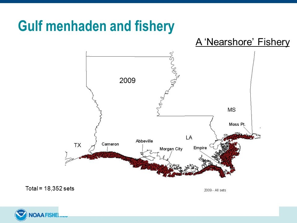 A 'Nearshore' Fishery 2009 Total = 18,352 sets Gulf menhaden and fishery