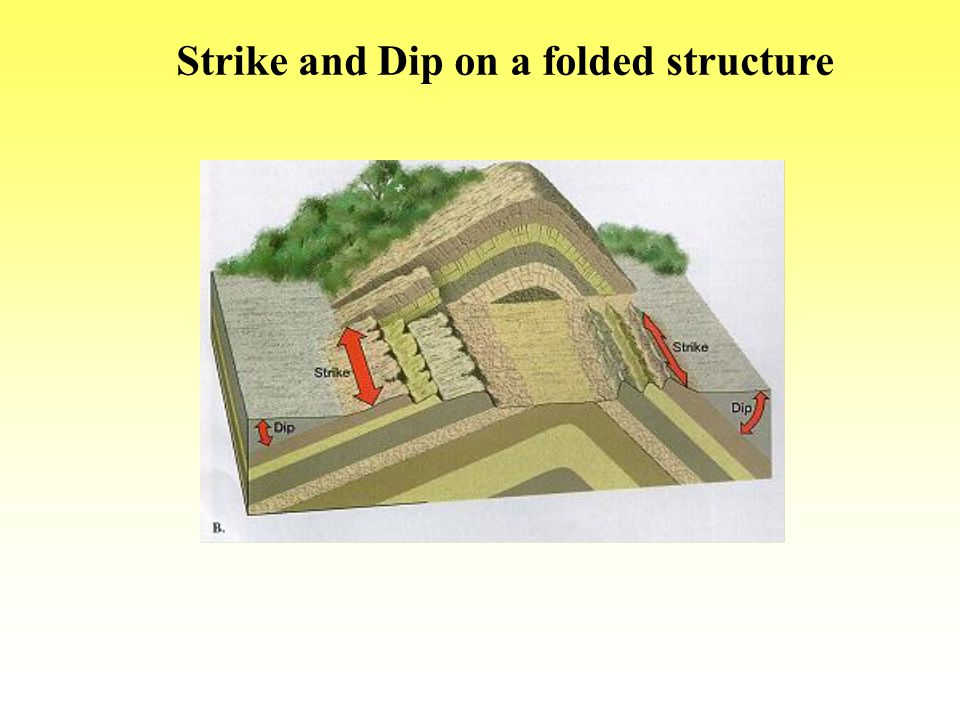 Strike and Dip on a folded structure