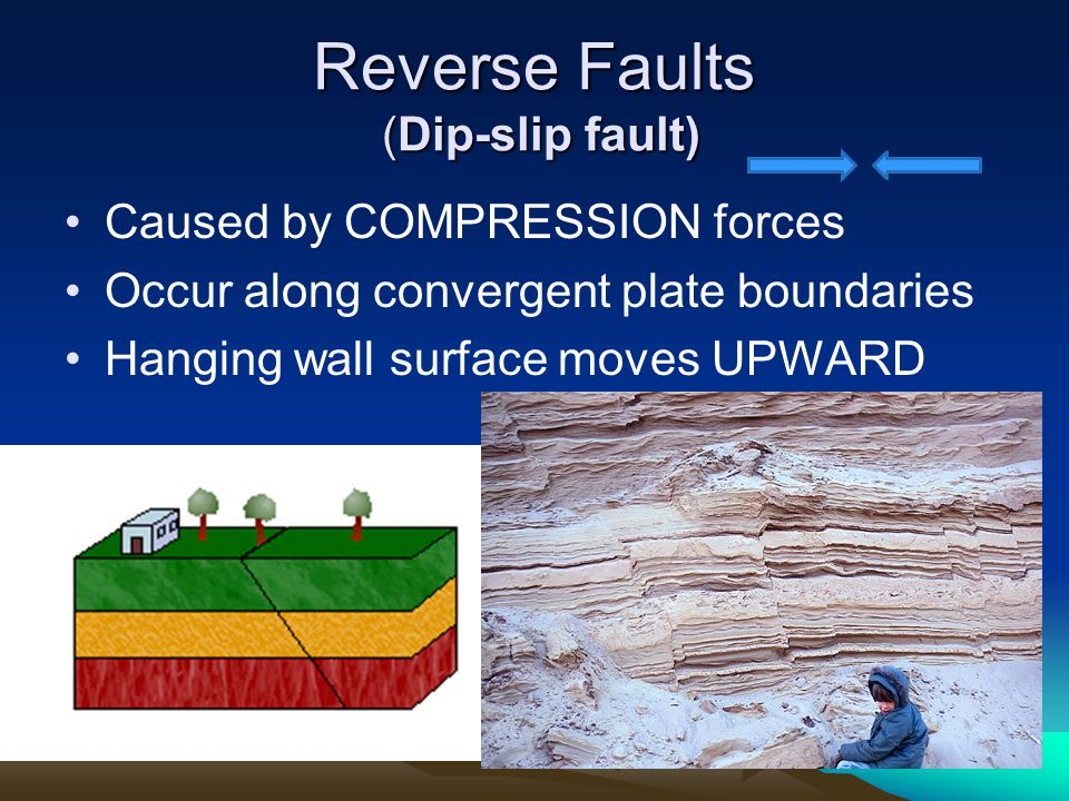Reverse Faults (Dip-slip fault) Caused by COMPRESSION forces Occur along convergent plate boundaries Hanging wall surface moves UPWARD
