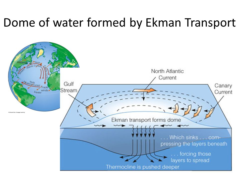Dome of water formed by Ekman Transport