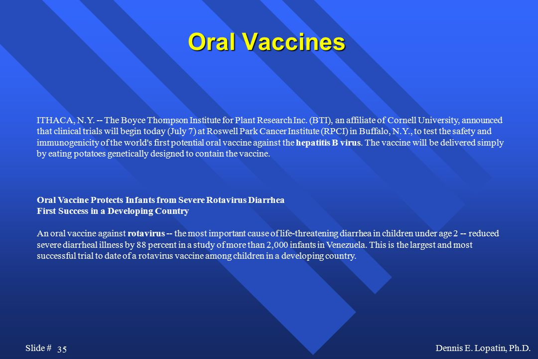 35 Slide #Dennis E. Lopatin, Ph.D. Oral Vaccines ITHACA, N.Y. -- The Boyce Thompson Institute for Plant Research Inc. (BTI), an affiliate of Cornell U
