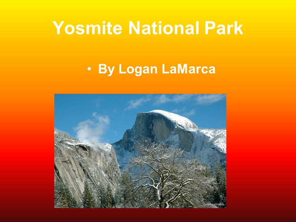 Yosmite National Park By Logan LaMarca
