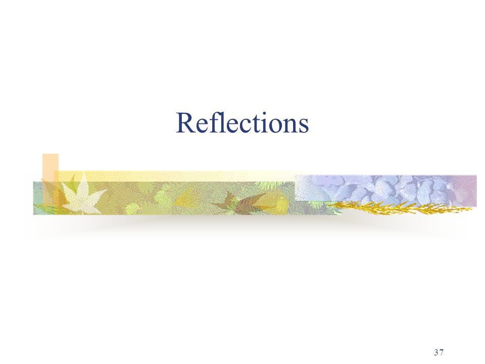 37 Reflections