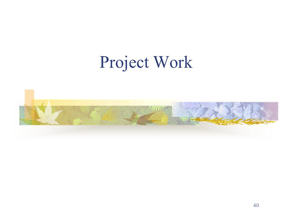 40 Project Work