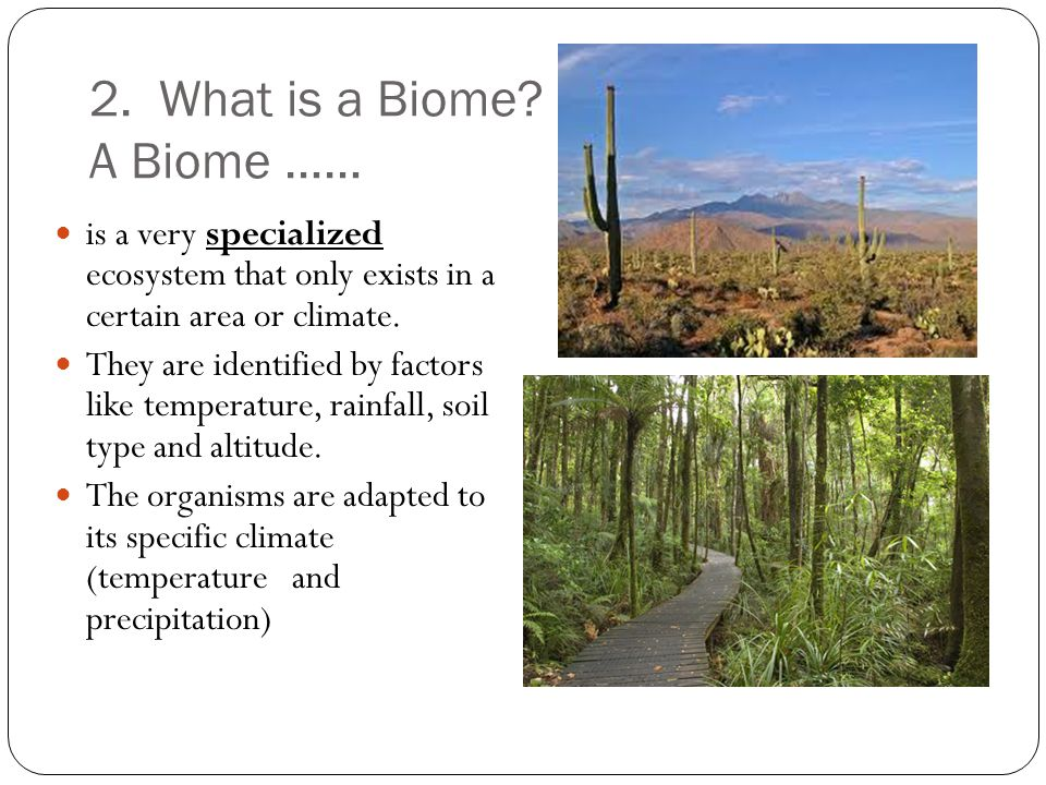 2. What is a Biome.