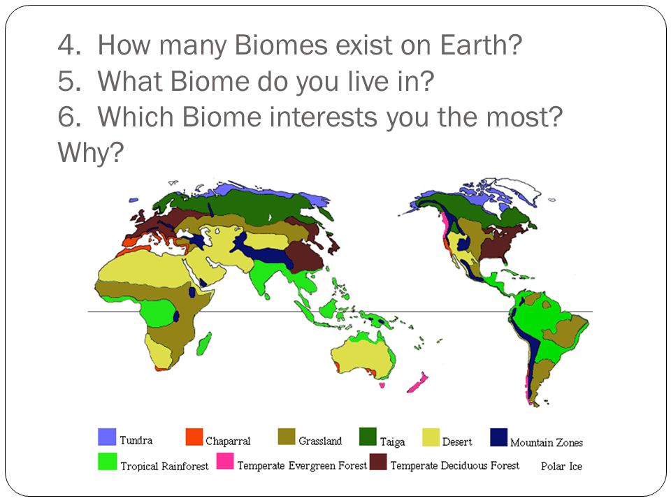 4. How many Biomes exist on Earth. 5. What Biome do you live in.