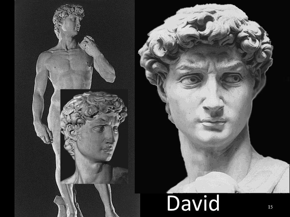 David 15