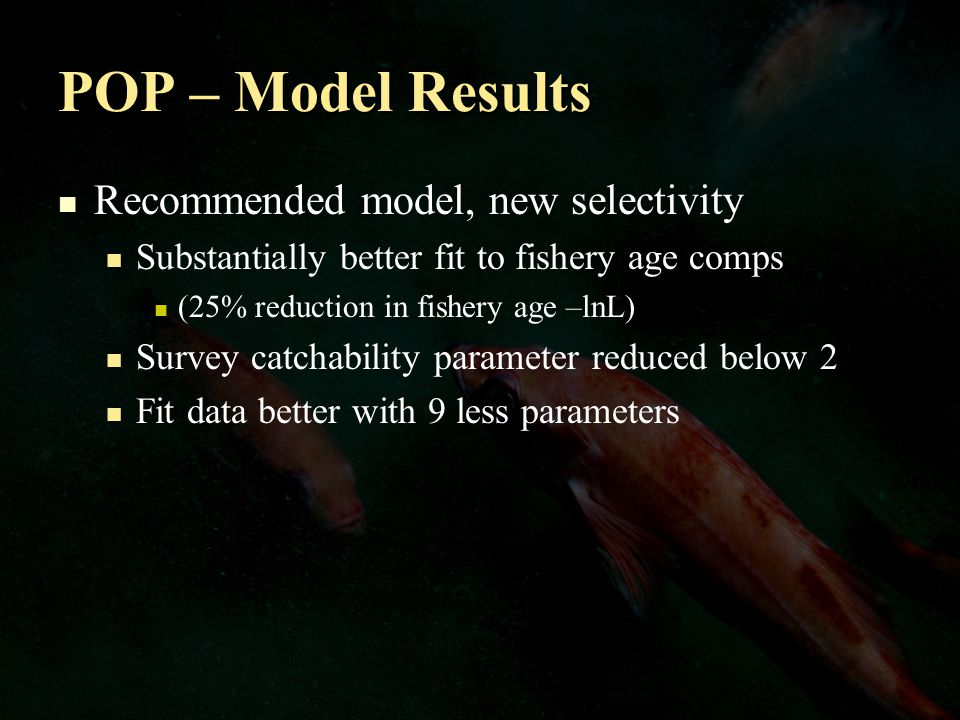 POP – Model Results Recommended model, new selectivity Substantially better fit to fishery age comps (25% reduction in fishery age –lnL) Survey catchability parameter reduced below 2 Fit data better with 9 less parameters