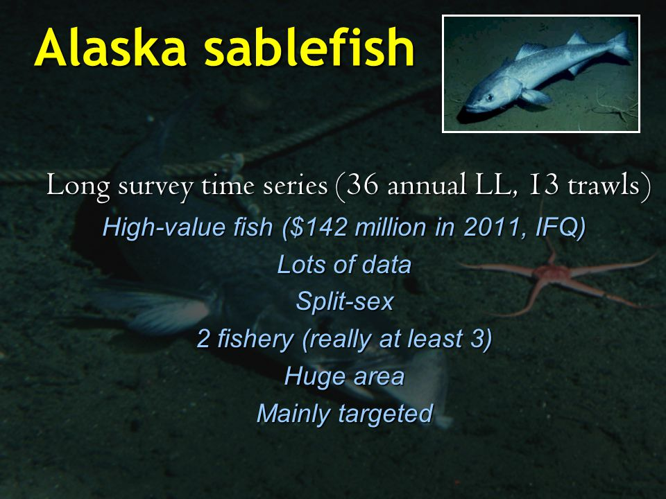 Alaska sablefish Long survey time series (36 annual LL, 13 trawls) Long survey time series (36 annual LL, 13 trawls) High-value fish ($142 million in 2011, IFQ) Lots of data Split-sex 2 fishery (really at least 3) Huge area Mainly targeted