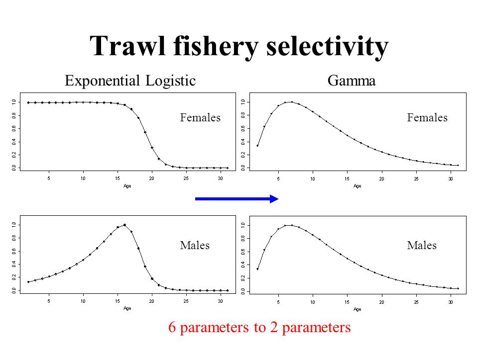 Trawl fishery selectivity Exponential LogisticGamma Females Males 6 parameters to 2 parameters