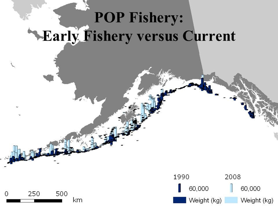 POP Fishery: Early Fishery versus Current