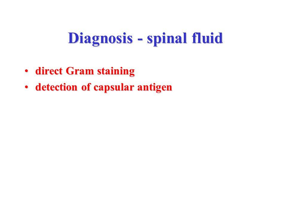 Diagnosis - spinal fluid Diagnosis - spinal fluid direct Gram stainingdirect Gram staining detection of capsular antigendetection of capsular antigen