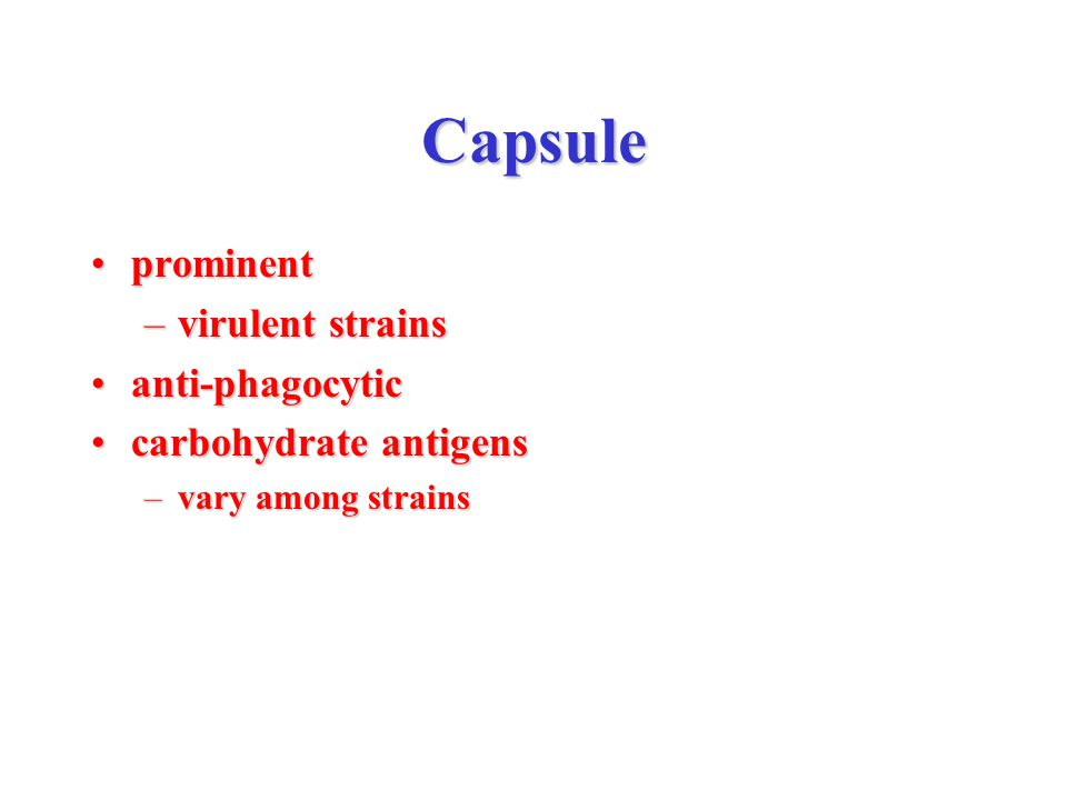 Capsule prominentprominent –virulent strains anti-phagocyticanti-phagocytic carbohydrate antigenscarbohydrate antigens –vary among strains