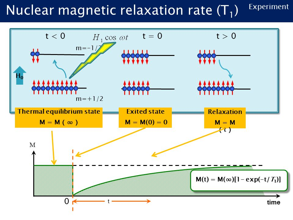 Nuclear magnetic relaxation rate (T 1 ) m=+1/2 m=-1/2 H0H0 time t M M(t) = M(∞)[1- exp(-t/T 1 )] Thermal equilibrium state M = M ( ∞ ) Relaxation M = M ( t ) Exited state M = M(0) = 0 t < 0t = 0t > 0 0