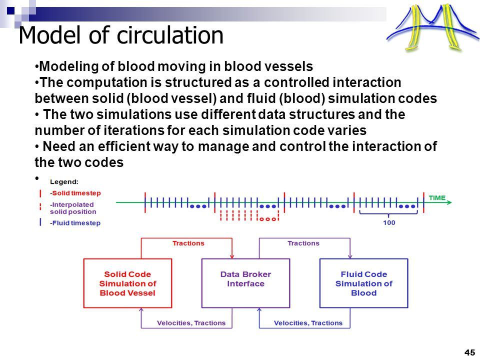Model of circulation Modeling of blood moving in blood vessels The computation is structured as a controlled interaction between solid (blood vessel) and fluid (blood) simulation codes The two simulations use different data structures and the number of iterations for each simulation code varies Need an efficient way to manage and control the interaction of the two codes 45