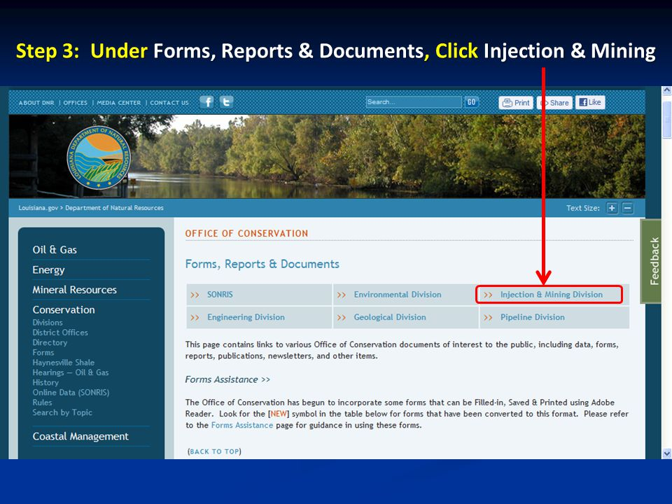 Step 3: Under Forms, Reports & Documents, Click Injection & Mining