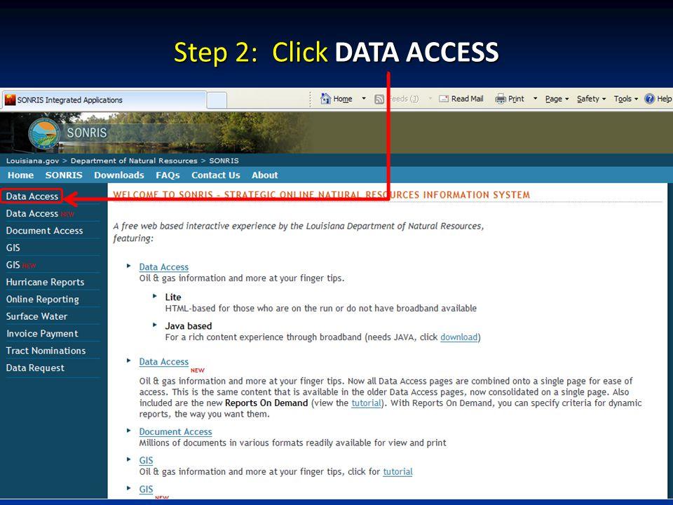 Step 2: Click DATA ACCESS