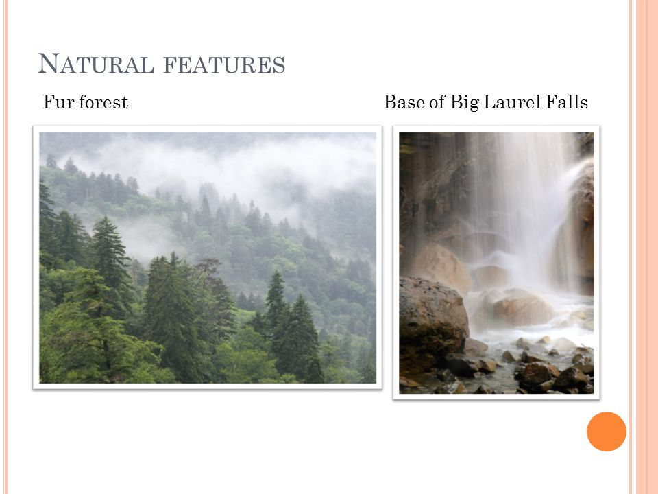 N ATURAL FEATURES Fur forest Base of Big Laurel Falls