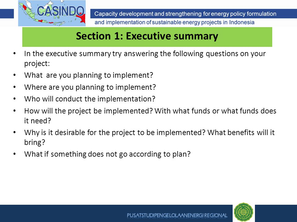 Section 1: Executive summary In the executive summary try answering the following questions on your project: What are you planning to implement.