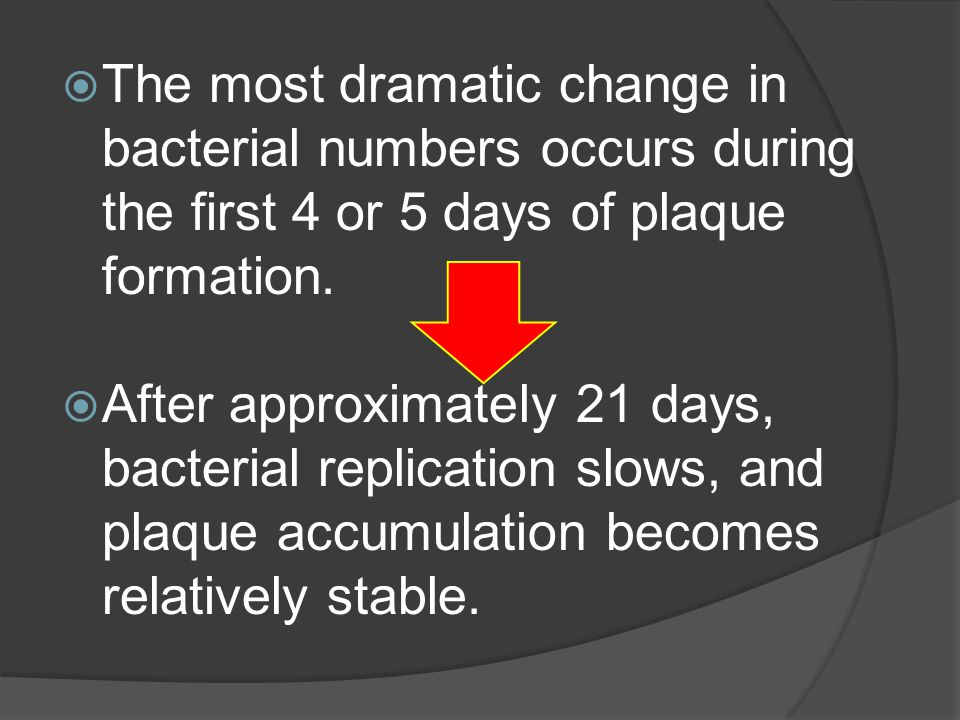  The most dramatic change in bacterial numbers occurs during the first 4 or 5 days of plaque formation.  After approximately 21 days, bacterial repl