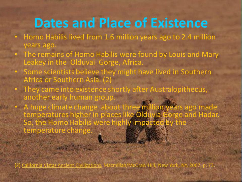 Dates and Place of Existence Homo Habilis lived from 1.6 million years ago to 2.4 million years ago.