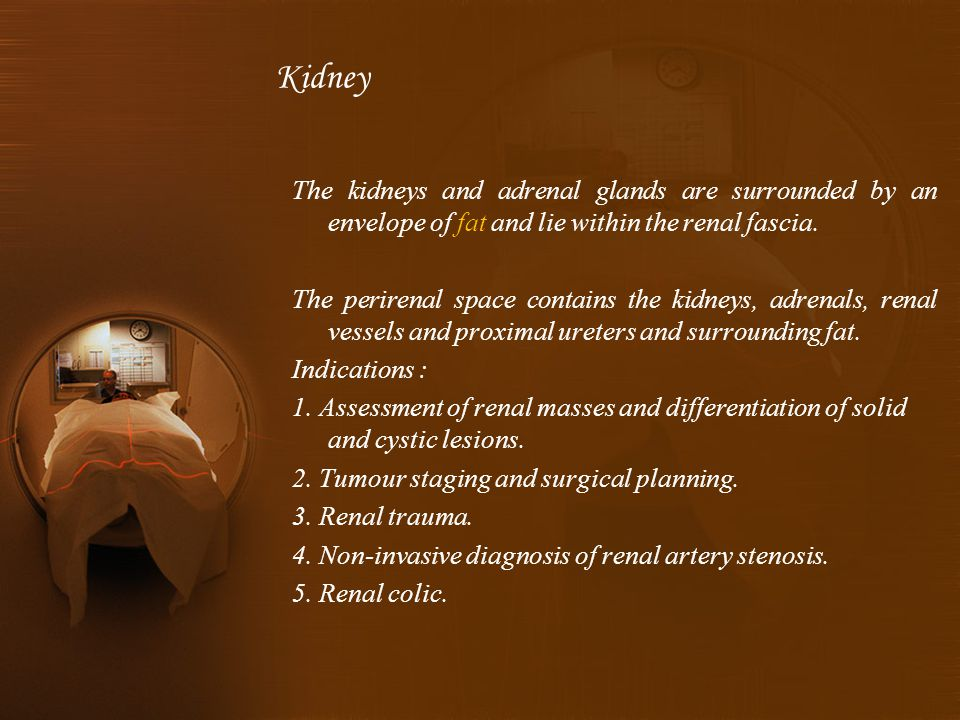 The kidneys and adrenal glands are surrounded by an envelope of fat and lie within the renal fascia.