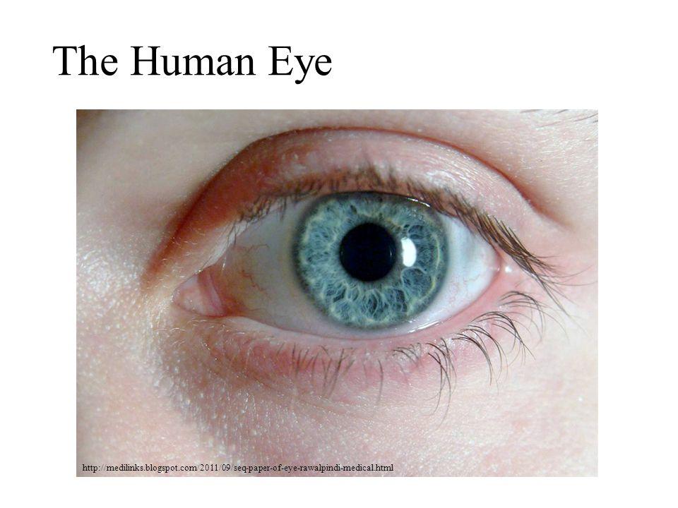 The Human Eye http://medilinks.blogspot.com/2011/09/seq-paper-of-eye-rawalpindi-medical.html