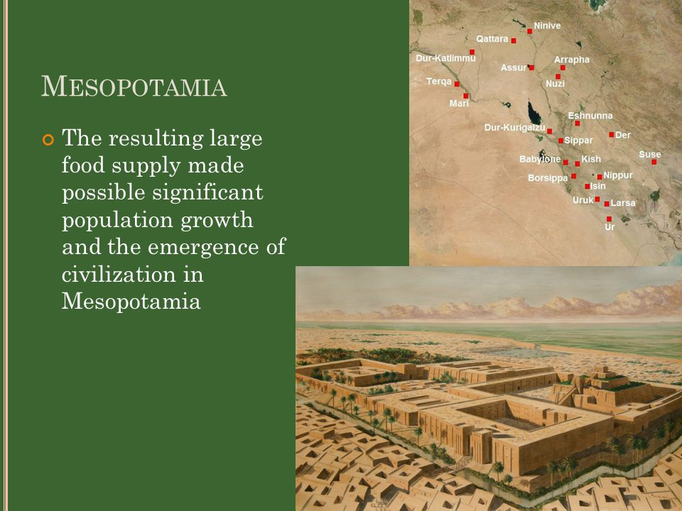 M ESOPOTAMIA The resulting large food supply made possible significant population growth and the emergence of civilization in Mesopotamia