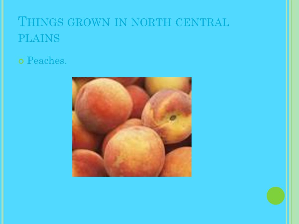 T HINGS GROWN IN NORTH CENTRAL PLAINS Peaches.