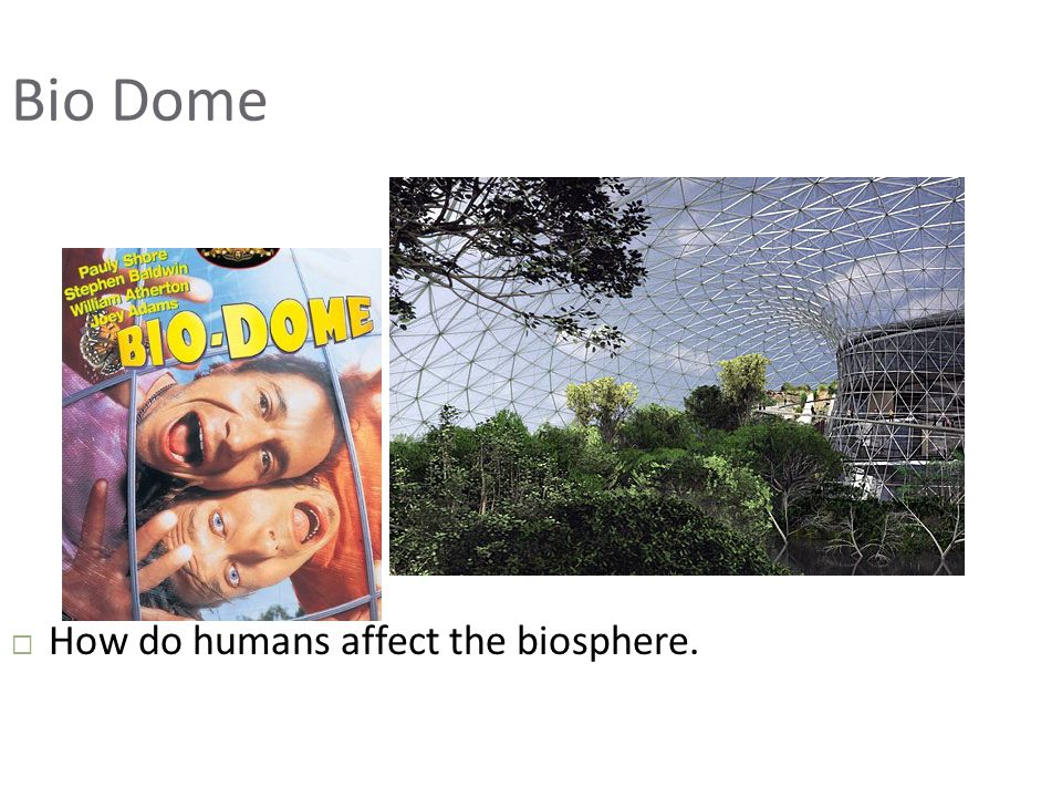 Bio Dome  How do humans affect the biosphere.