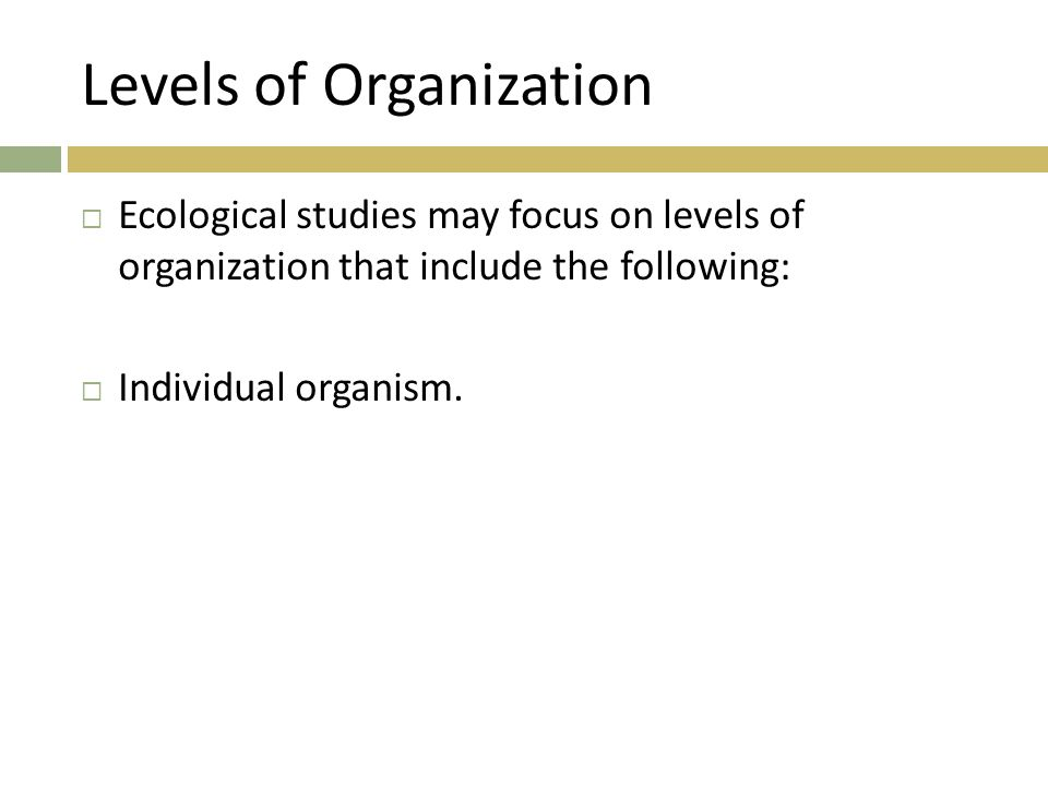 Levels of Organization  Ecological studies may focus on levels of organization that include the following:  Individual organism.