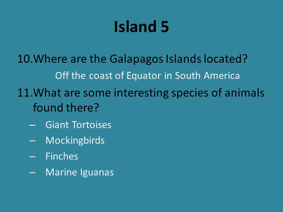Island 5 10.Where are the Galapagos Islands located? Off the coast of Equator in South America 11.What are some interesting species of animals found t