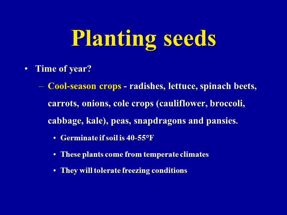 Planting seeds Time of year Time of year.