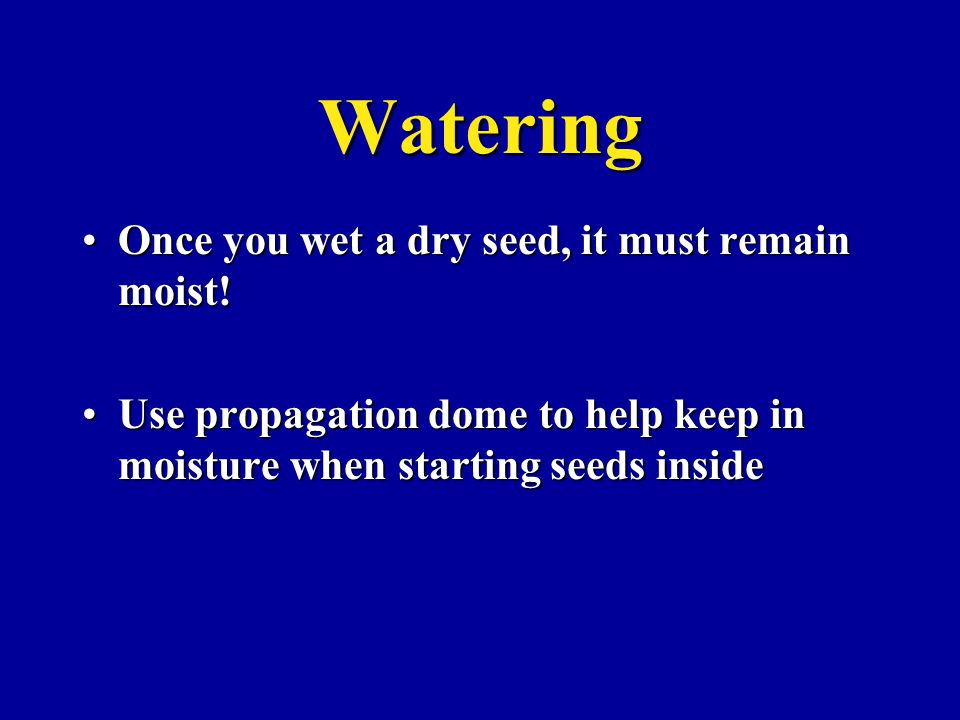 Watering Once you wet a dry seed, it must remain moist!Once you wet a dry seed, it must remain moist! Use propagation dome to help keep in moisture wh