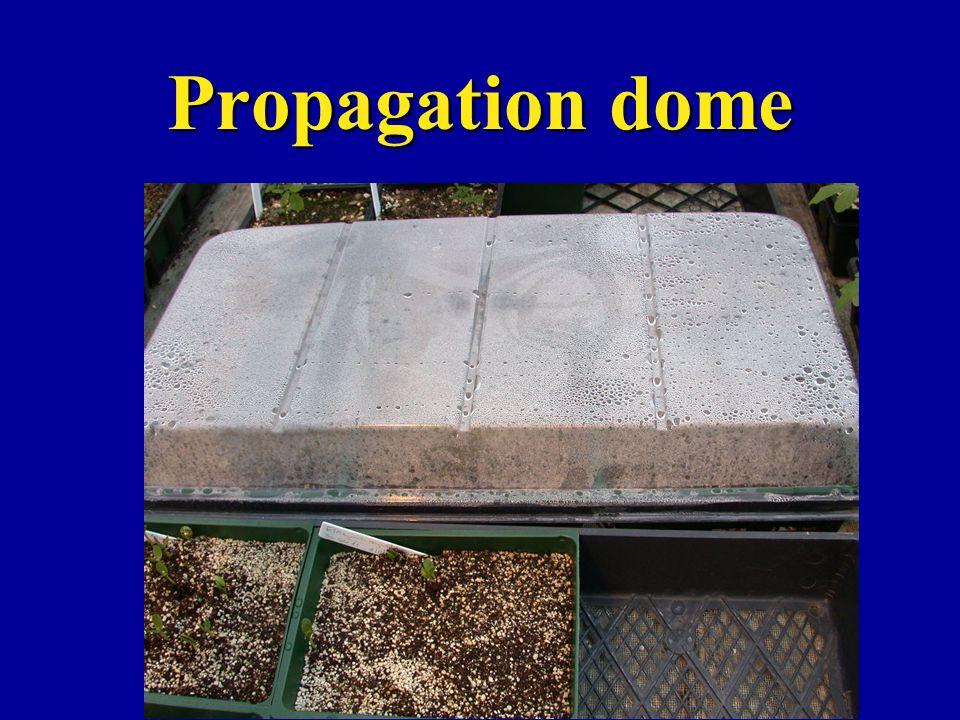 Propagation dome