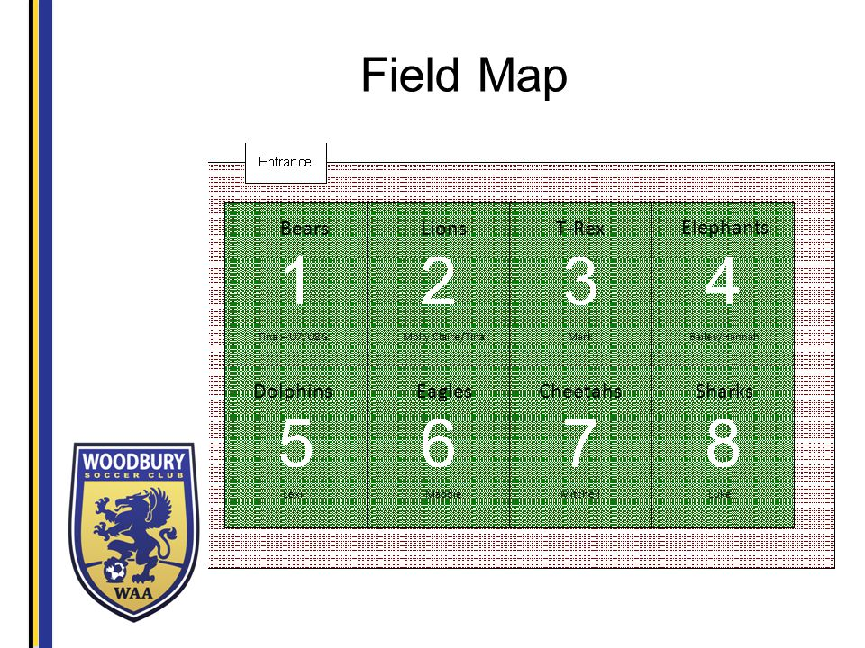 Field Map T-RexLions Elephants Sharks Cheetahs EaglesDolphins Bears Molly Claire/Tina Mitchell Mark MaddieLuke Bailey/HannahTina – U7/U8G Lexi