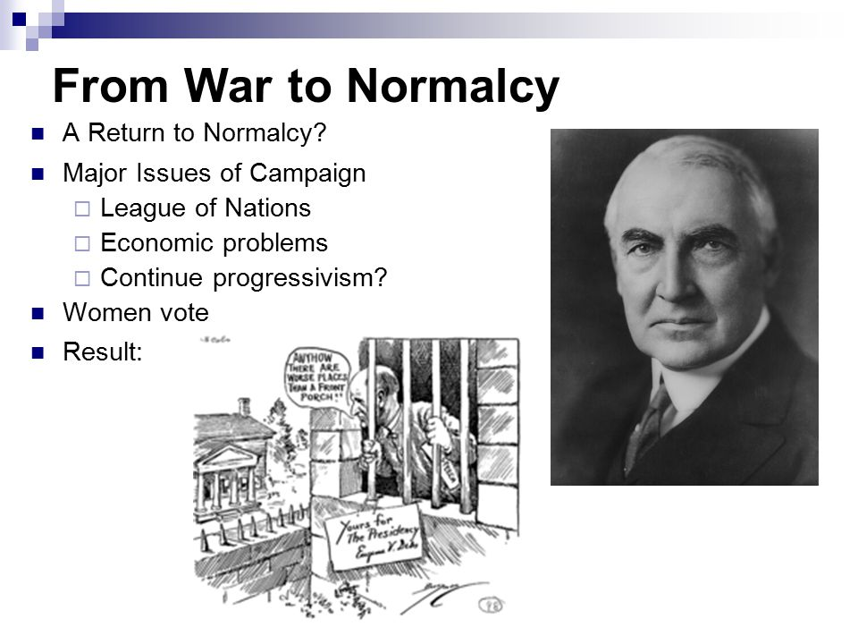 Politics in the 1920s Normalcy and Good Times
