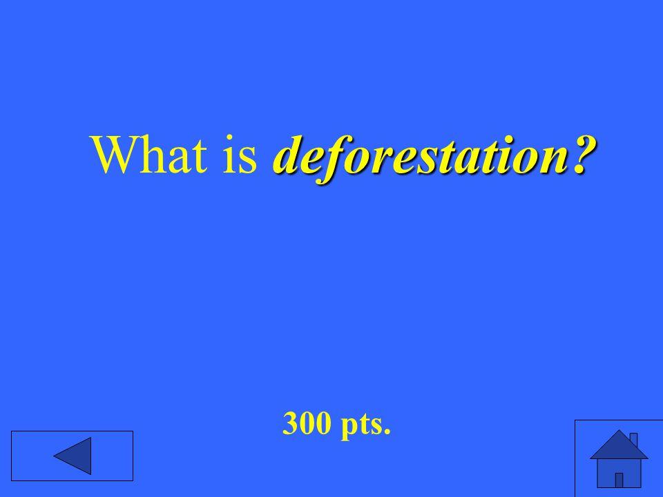 deforestation What is deforestation 300 pts.
