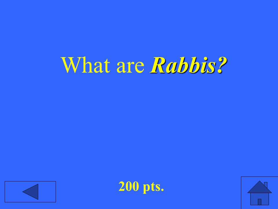 Rabbis What are Rabbis 200 pts.