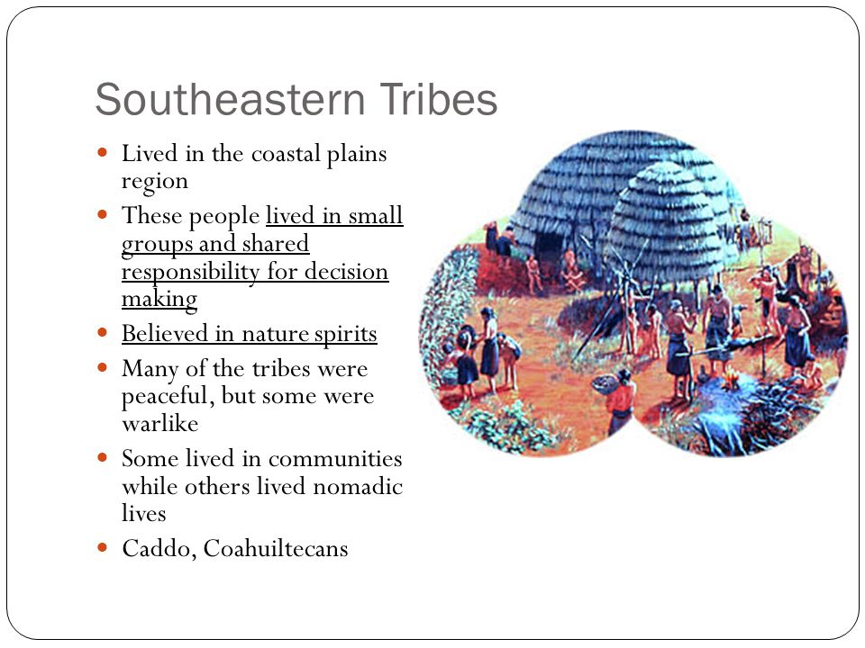 Caddos Lived in the eastern part of Texas 24 groups made up the Caddo > confederacies Each group had its own government, both men and women help important position Was the most agriculturally advanced of the tribes, growing squash, beans, pumpkins, and corn Also gathered food and fished/hunted