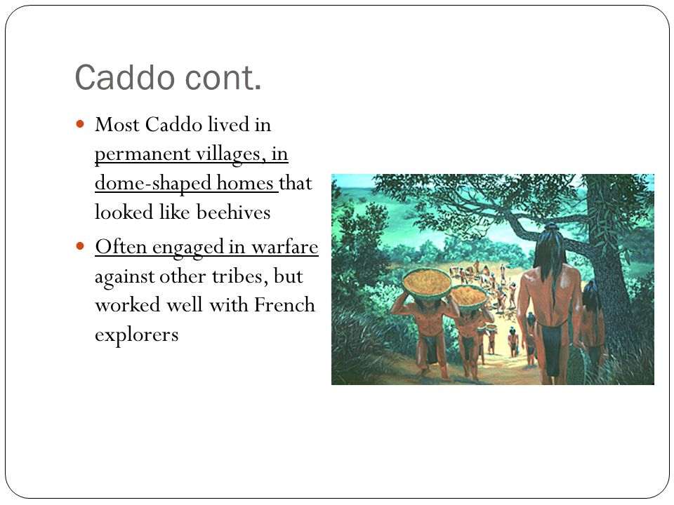 Caddo cont. Most Caddo lived in permanent villages, in dome-shaped homes that looked like beehives Often engaged in warfare against other tribes, but