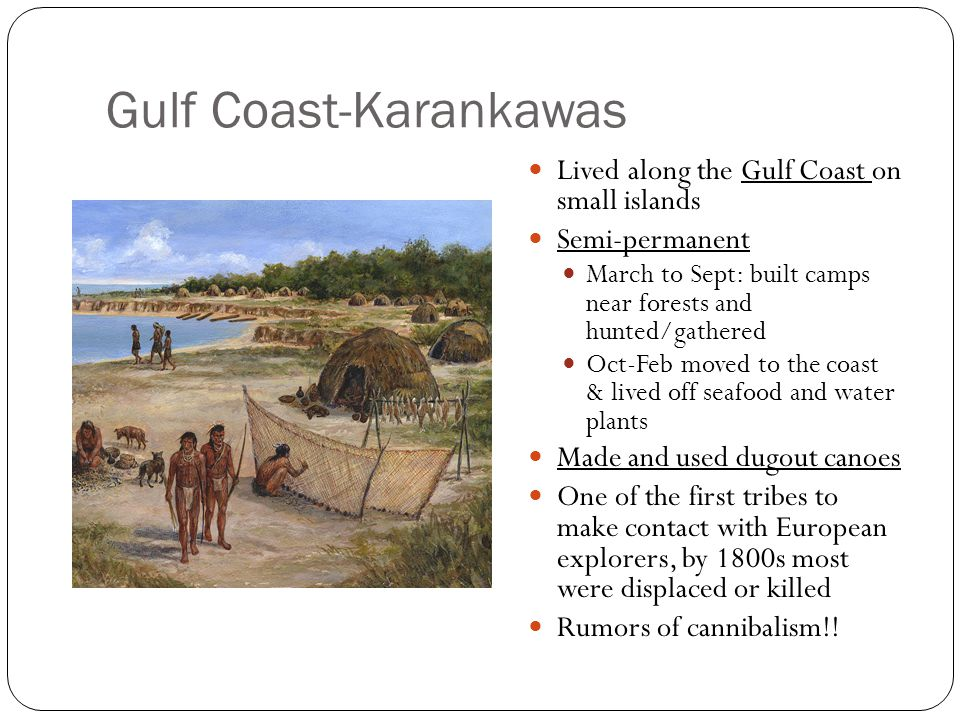 Gulf Coast-Karankawas Lived along the Gulf Coast on small islands Semi-permanent March to Sept: built camps near forests and hunted/gathered Oct-Feb m